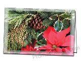 Poinsettia Custom Holiday Greeting Card